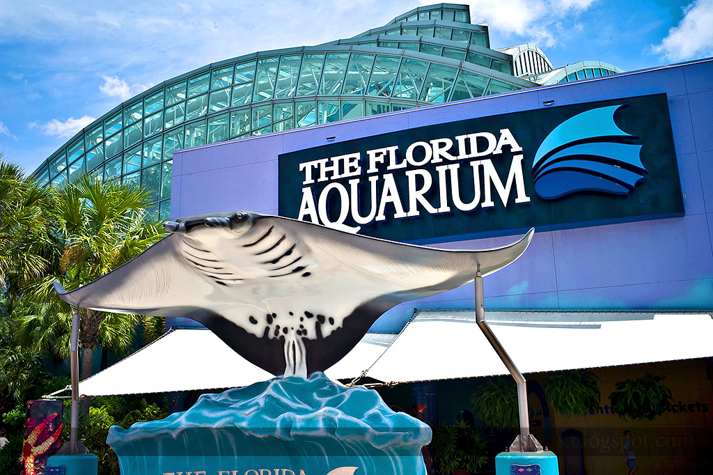 Is the Florida Aquarium wheelchair accessible? The main entrance is accessible by wheelchair. The aquarium is fully accessible to guests wi th mobility issues and a limited number of wheelchairs are available for rent on a first-come, first-served basis with appropriate identification.