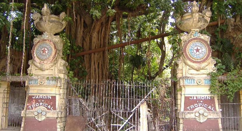 The Tropical Gardens Of Havana Los Jardines De La